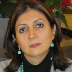 Farnaz Saghafi